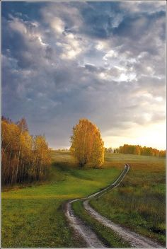 Winding Road - by Vladimir Gurov