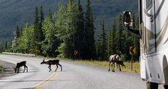 Driving Routes | British Columbia | Destination BC - Official Site