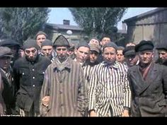 Persecuted: These colour photos show the earliest concentration camps set up by the Nazis after they rose to power. When Hitler was appointed chancellor in 1933 he acted quickly to incarcerate and neutralise those he perceived as a threat Political Prisoners, Jehovah's Witnesses, Persecution, Second World, World War Two, Historical Photos, Wwii, Forget, Cbs News