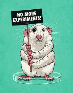 I fully support the termination of animal testing & try my hardest to only by products from companies who are cruelty free. Do not torture our pets The Animals, Vegan Animals, Small Animals, Plastic Animals, Funny Animals, Stop Animal Testing, Stop Animal Cruelty, Animal Testing Companies, Mon Combat