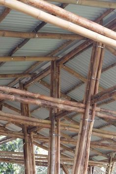 Bamboo Architecture, Sustainable Architecture, Architecture Design, Wood Path, Bamboo House Design, Bamboo Building, Double Carport, Bamboo Construction, Bamboo Crafts