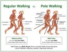 Muscles: Nordic walking vs walking