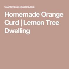 Homemade Orange Curd | Lemon Tree Dwelling