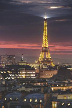 Eiffel Tower, Paris | WF