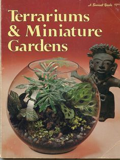 Nothing says 1970's like a terrarium.... We owned this very book and our terrarium was in a 5 gallon glass bottle.