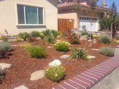 Santa Clara Landscape Rebate Program Open Till End of Year