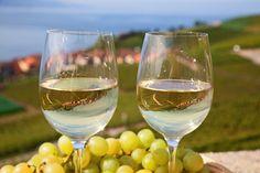 White wine produced in Greek vineyards