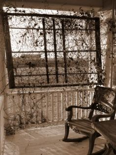 antique mattress springs attatched to the side of a porch where the vines can climb... very creative idea, love it!