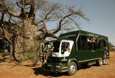 Drifters 12 Day East Africa Tour