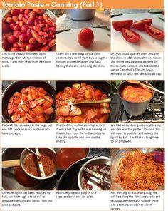 Jody's Kitchen: Canning Tomato Paste
