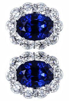 Vivid & Elegant Sapphire Cluster Earrings by Shreve, Crump & Low