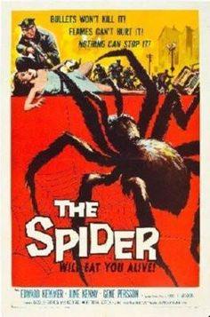 Spider Poster 24inx36in