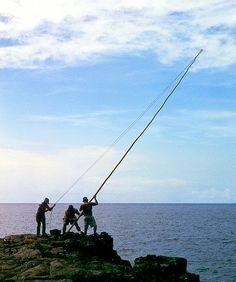 ka la'au and ma'ama'a: traditional hawaiian style ulua fishing. hang bait