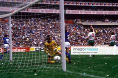 Bulgaria, Soccer, Sports, Italia, Hs Sports, Futbol, European Football, European Soccer, Football