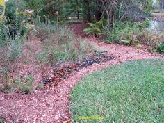 NativeGarden 6 Easy Ways To Save Time U0026 Money In Your Landscape