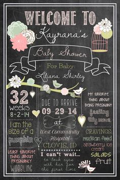 20x30 Shabby Chic Chalkboard Girly Bird Theme Baby by BTheHostess