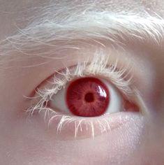 Trendy Eye Close Up Human Beautiful 19 Ideas Pretty Eyes, Beautiful Eyes, Photo Reference, Art Reference, Modelo Albino, Images Esthétiques, Aesthetic Eyes, Aesthetic People, Eye Photography