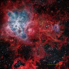 Esta espectacular imagen de la Nebulosa de la Tarántula (en la Gran Nube de Magallanes), ha sido seleccionada como la imagen del día de la NASA. Es una de las regiones más grandes de formación de estrellas que conocemos, con un tamaño de 1.000 años-luz. Foto de Josep Drudis.