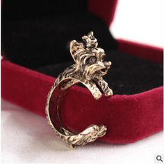 Yorkshire Terrier Dog Ring