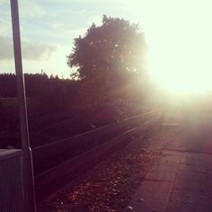 Autumn is beautiful. I hate when the sun goes up so early, dark mornings - so good because your eyes will survive.