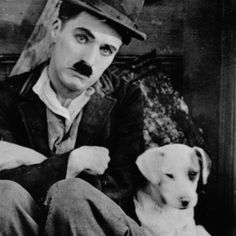 """Charlie Chaplin and his big, puppy dog eyes star in A Dogs Life.  """"The Tramp"""", as he is known, is struggling to make it in the big city until he comes across a special fluffy friend."""