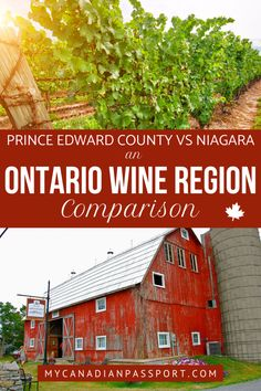 Learn all about the differences between Niagara and Prince Edward County before booking your Ontario wine region getaway. #princeedwardcounty #ontariowine #visitpec #niagarawinery Travel Guides, Travel Tips, Canadian Passport, Ontario Travel, Niagara Region, Prince Edward, Canada Travel, Natural Wonders, Beautiful Beaches