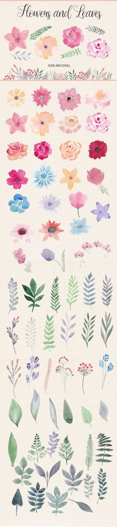 This pack contains more than 40 watercolor flowers, about 40 floral elements (le. This pack contains more than 40 watercolor flowers, about 40 floral elements (leaves, branches), 5 Painting Inspiration, Art Inspo, Design Inspiration, Illustration Blume, Watercolor Illustration, Motif Floral, Floral Flowers, Floral Border, Pretty Flowers