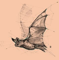 Marvelous Drawing Animals In The Zoo Ideas. Inconceivable Drawing Animals In The Zoo Ideas. Pencil Drawings Of Animals, Animal Sketches, Cartoon Drawings, Drawing Sketches, Art Drawings, Drawing Tips, Drawing Ideas, Bat Sketch, Skull Sketch