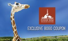 Just in time for Labor Day weekend, check out this great coupon! Buy ONE adult ticket and get ONE free admission ticket of equal or lesser value. Free Coupons, Bogo Coupons, Travel Deals, Travel Destinations, Glen Rose Tx, Admission Ticket, Best Family Vacations, Major Holidays, Travel Channel