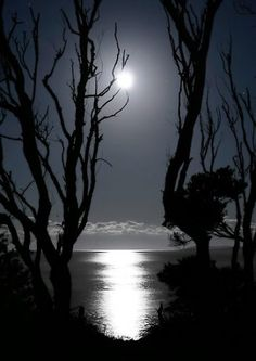 Full moon pinned with Bazaart pinned with Bazaart