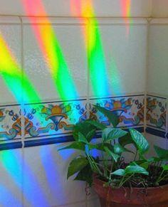 Axicon Rainbow Window Sun Catcher — Rainbow Symphony, Inc.
