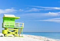 10 palabras que definen a Miami