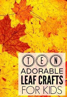 If your child likes playing in the leaves as much as mine does, and you're on the hunt for some new and exciting fall crafts for boring days indoors, you'll love this list of adorable leaf crafts for kids!