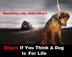 Abandoning *any* pet - not just a dog - is seriously selfish and callous.