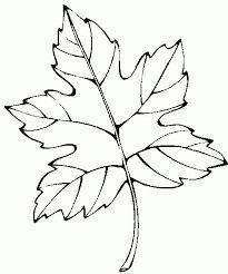 ausmalbilder, malvorlagen - blätter kostenlos zum ausdrucken | hojas | pinterest | ausdrucken