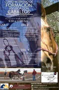 Curso intensivo de formación asistida con caballos