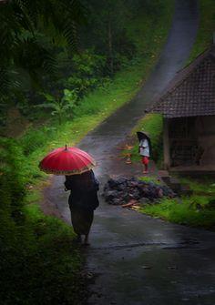 Behind Bali.  Early morning rain outside Ubud, wonderful red umbrella.