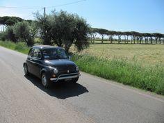Fiat 500 naturalmente