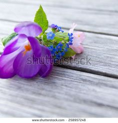 Small bouquet of spring flowers on wooden background bunch of crocus, forget-me-not and cherry blossom on grunge wooden table