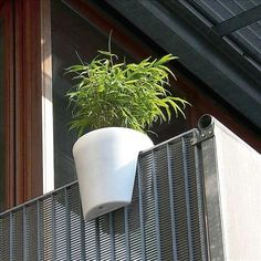 At the minimum the balcony, this Spanish balcony railing pot might fit?  The pitcher's see ...