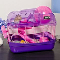 Help your rodent friend stay trim with this Spin City Health Club hamster cage by Ware. Multi-leveled with a variety of fun gadgets for hamsters, dwarf hamsters, mice and gerbils alike, this unique ha