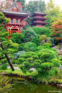 Japanese garden landscape , golden gate park