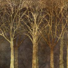 Wall mural - Birch Grove Night Sepia