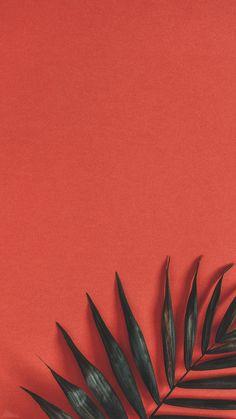 40 Super Cute Flowers and Fruit Wallpaper 40 Super Cute Flowers and Fruit Wallpaper . - 40 super cute flowers and fruits wallpapers 40 super cute flowers and fruits wallpapers, This image - Wallpaper Tumblr Lockscreen, Disney Phone Wallpaper, Iphone Background Wallpaper, Cellphone Wallpaper, Aesthetic Iphone Wallpaper, Aesthetic Wallpapers, Wallpaper Quotes, Wallpaper Iphone Vintage, Lock Screen Wallpaper Iphone