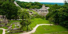 Mitten im Dschungel erheben sich die Maya Stätten von Palenque, Mexiko