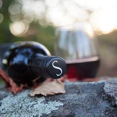 """""""Autumn is a second spring when every leaf is a flower."""" - Albert Camus #FallforSpellbound #WineWednesday"""
