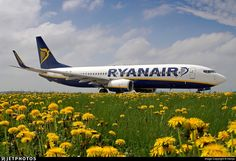 Dandelions' Ryanair.. EI-EMB. Boeing 737-8AS. JetPhotos.com is the biggest database of aviation photographs with over 3 million screened photos online!