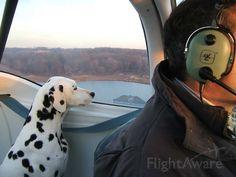 Photo of Piper Tomahawk (N9973T) ✈ FlightAware