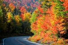 """KANCAMAGUS HIGHWAY, NEW HAMPSHIRE  Drive along the Kancamagus Highway and enjoy 35 miles of scenic byway displaying breathtaking scenery. It is often referred to as """"the Kanc."""" Known as one of the best fall foliage viewing areas in the entire country, the Kancamagus Highway is designated an American Scenic Byway for its rich history, aesthetic beauty and culture. The road is a commerce-free climb past colonial farmhouses, scenic covered bridges, and miles of hardwood and evergreen forests."""