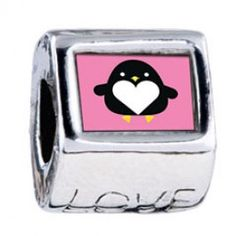 Cute Black Penguin Photo Love Charms  Fit